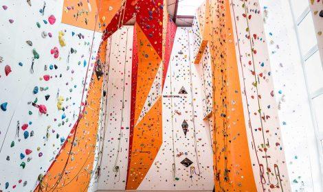 Life-fitness-Kletterwand